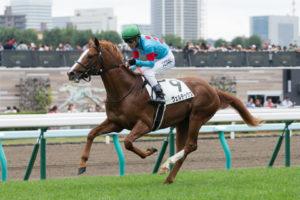 ヴェルテックス新馬戦レース